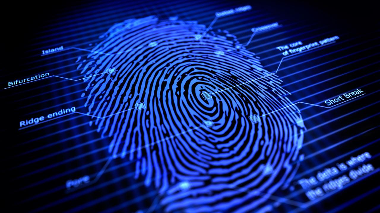 This is an image of a fingerprint.