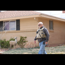 Sgt. Wayne Weyler walks in front of a house