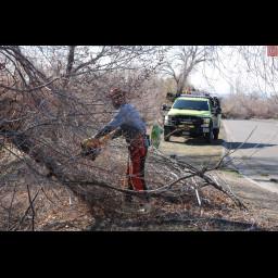 firefighter cutting brush