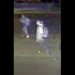 suspects_-_ring_video