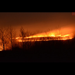 This is an image of a fire.